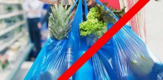 प्लास्टिक बंदी